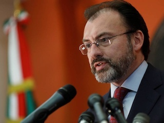 web-videgaray